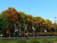 中津川周辺の風景写真