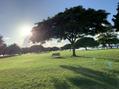 ハワイ!とても大切な場所