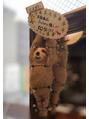 メリーランド 自由が丘(MerryLand)年末SALE!.【自由が丘/美髪カラー/髪質改善】