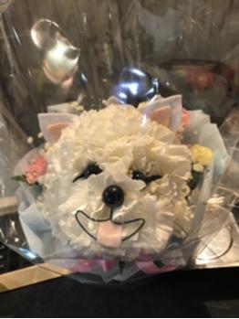 【櫻井】プレゼント【関内】_20180107_1