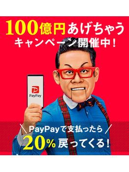 PayPayの導入について_20181211_1