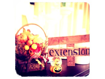 THE EXTENSION_20131003_1