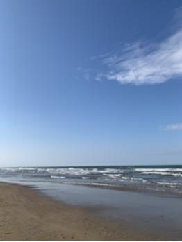 海だー_20181127_1