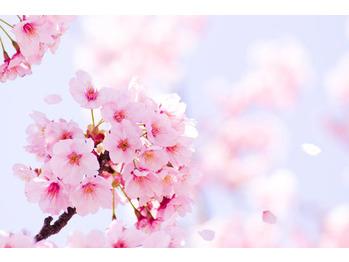 <3月4月限定 春休み学生応援フェア>☆_20180320_1