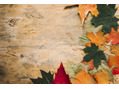 10月のケアリスト公休日のお知らせ