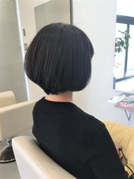 guest snap_20170122_3