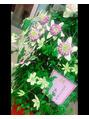 ステキなお花のプレゼント♪