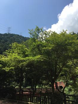 """""""田舎の夏""""_20160812_2"""
