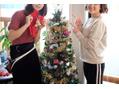 クリスマスツリー設置しました!