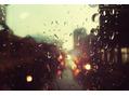 もうすぐ梅雨だよ。