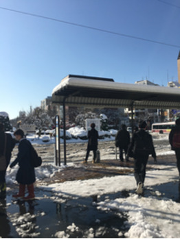 【桂畑】雪景色カット講習いってきました【関内】_20180123_1