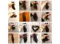 【感謝】2018年のヘアスタイルと2019年 川島
