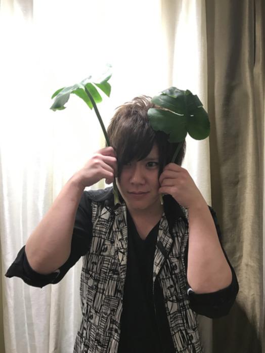 観葉植物【新宿 美容室 Ai カット】_20170604_1