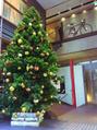ロータス(Lotus)☆クリスマスツリーが目印し☆