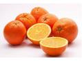 色相と心理学(オレンジ)