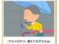本日雨予報ですが、まだふっておりません!