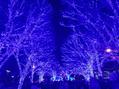☆青の洞窟☆