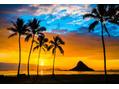 ハワイ研修についてご報告