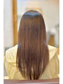 サロンソリューション 美髪再生プログラム_20160609_2