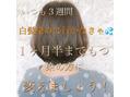 シアアオヤマ 表参道青山(SHEA aoyama)自然な色へ。白髪染めのデザイン。