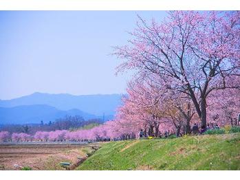 春の訪れ_20210318_1