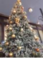 ★クリスマスツリー★^^