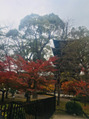 仕事で京都に行って来ました!