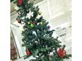 クリスマスディスプレイ♪