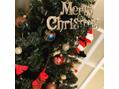 ☆クリスマスツリー点灯式☆
