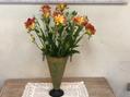 四季折々のお花