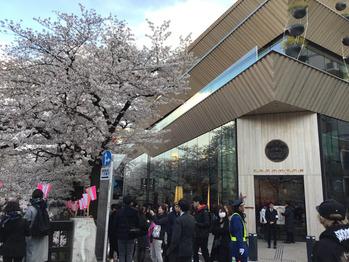 平成最後の桜☆_20190403_2