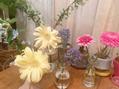 リノア(LINOA)花瓶お花ブーム