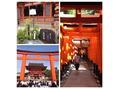 京都ぶらり旅♪