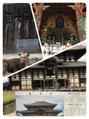 奈良公園(^○^)