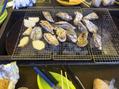牡蠣小屋!