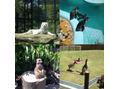 動物園~!