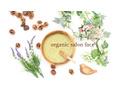 オーガニックサロン フェイス 梅田店(organic salon face)9月からのご予約に関するお知らせ