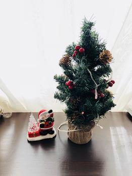クリスマスになりました☆_20171105_1