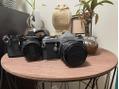 2台目フィルムカメラ