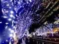 Merry Christmas ☆