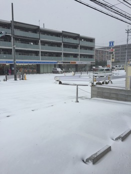 大雪part2_20160124_1