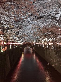 お花見_20180401_2