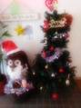 クリスマスが今年もやってくる!!