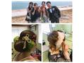 お友達の結婚式