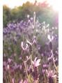 アロマテラピースパ癒しのラベンダーの香り