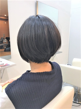 guest snap_20170227_1