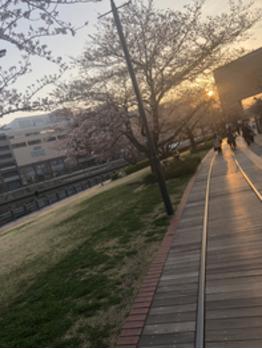 【SAKI】出張ヘアセット【BOB関内】_20180330_2
