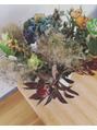 今月のお花♪