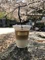 葉桜とカフェラテ