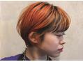 オレンジショートヘアー